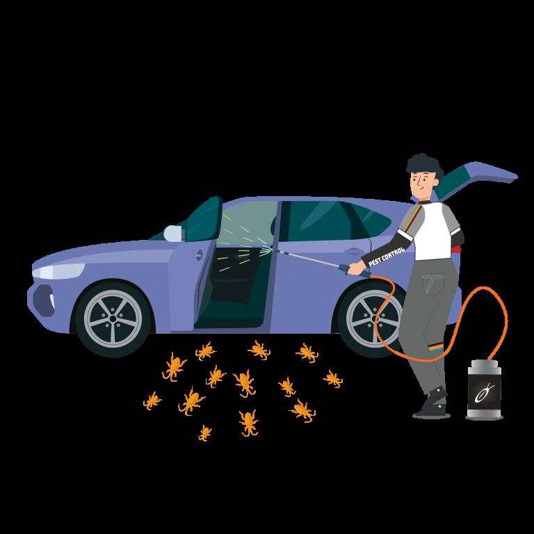 doctor-cockroach-herbal-in-car-service-tkkinternational-copyright-2021-บริการกำจัด-แมลงสาบ-สมุนไพร