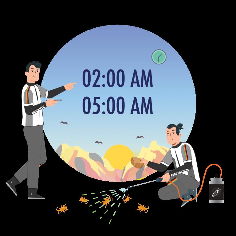 doctor-cockroach-herbal-product-extra-time-service-early-morning-tkkinternational-copyright-2021-บริการกำจัด-แมลงสาบ-สมุนไพร