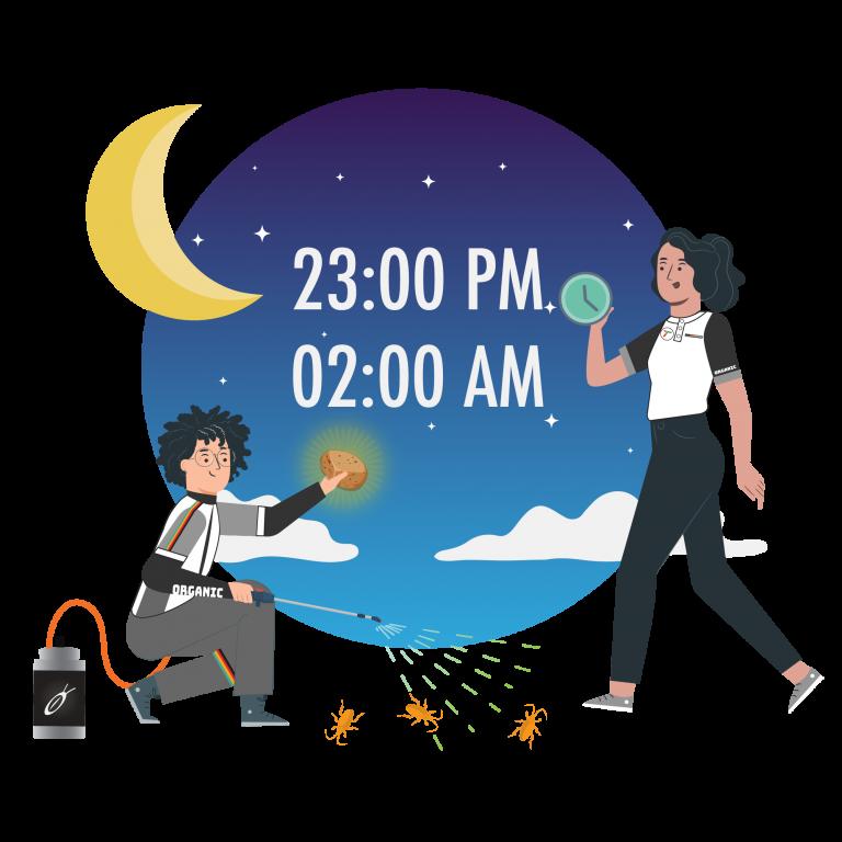 doctor-cockroach-herbal-product-extra-time-service-midnight-tkkinternational-copyright-2021-บริการกำจัด-แมลงสาบ-สมุนไพร