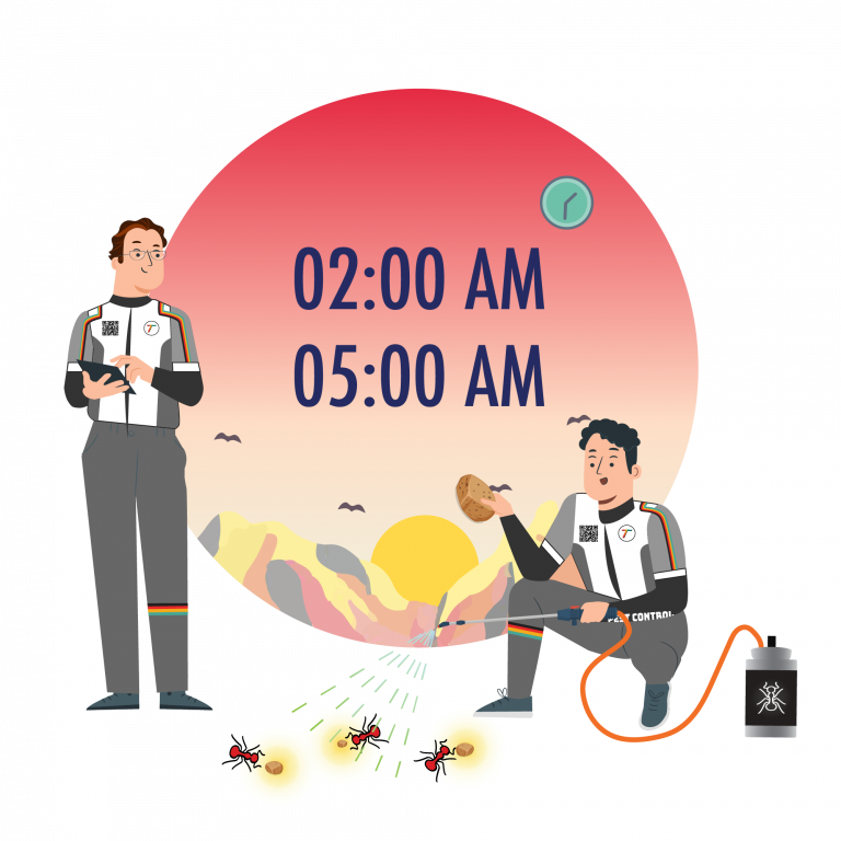 no-ant-herbal-product-extra-time-service-early-morning-tkkinternational-copyright-2021-บริการไล่-มด-สมุนไพร